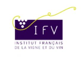 20190830141911!Logo_IFV
